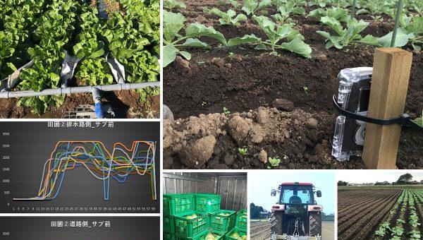 【ご案内】野菜の貯蔵性に関する実証報告会(5月30日)